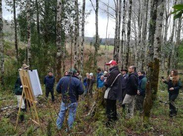 Pequeños y medianos propietarios de Los Ríos evalúan el manejo del bosque nativo en terreno