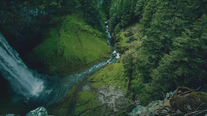 Con llamado a gestionar los bosques para el agua comenzó conferencia científica en la UACh