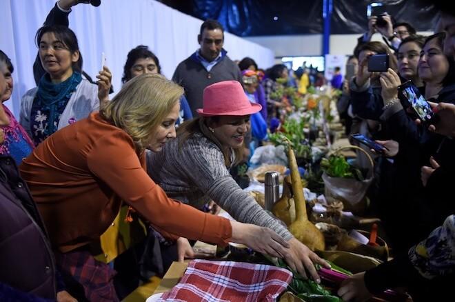 Cecilia Morel participa en ceremonia cultural mapuche y visita feria de mujeres emprendedoras en Freire