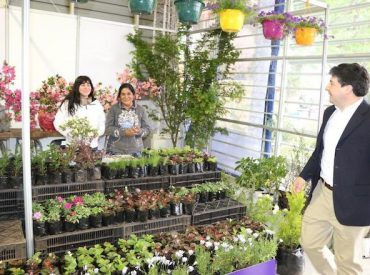 Este fin de semana la Expo Primavera regresa al Parque Saval