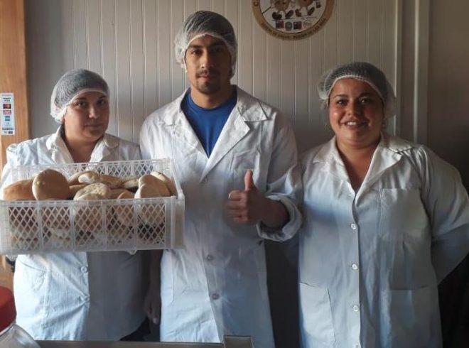 Nuevas panaderías de Valdivia se suman al compromiso de reducir el sodio en el pan