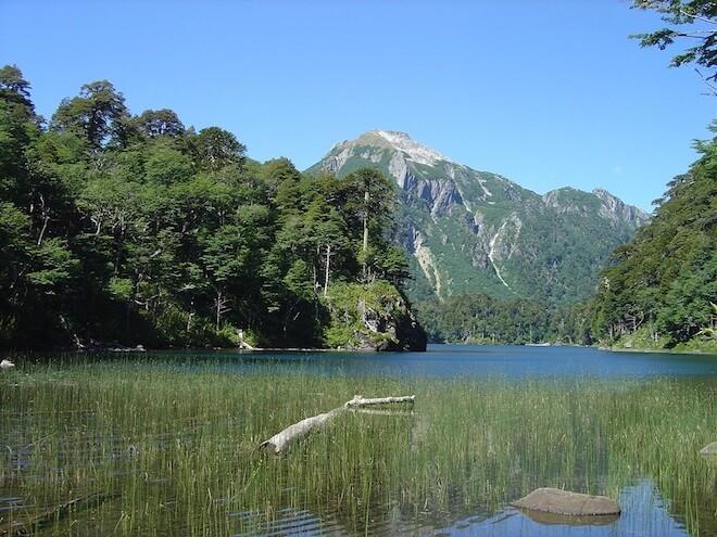 Conaf celebra Día Nacional del Medioambiente liberando ingreso a parques nacionales