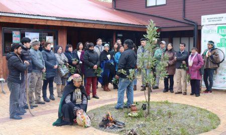 Municipalidad de Paillaco conmemoró el 12 de octubre con rogativa mapuche