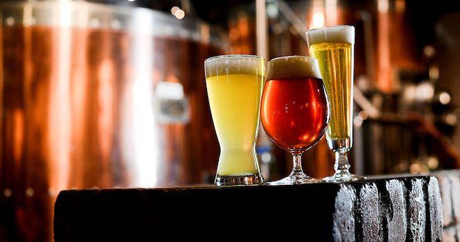 Realizarán charla sobre potencial de la cerveza artesanal valdiviana