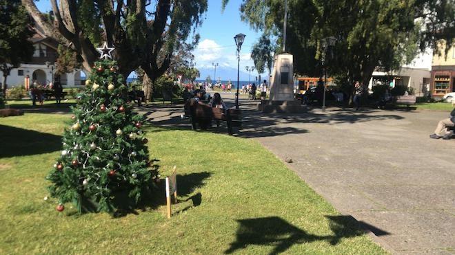 Hasta el 28 de diciembre se extenderá la Tannenbaum Fest o Fiesta del Árbol de Navidad en Plaza de Armas