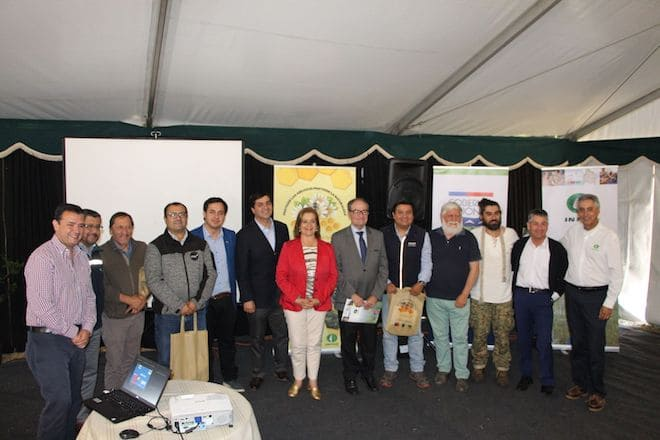 Infor lanza segunda etapa de programa flora melífera que beneficiará a productores apícolas de Biobío y Ñuble