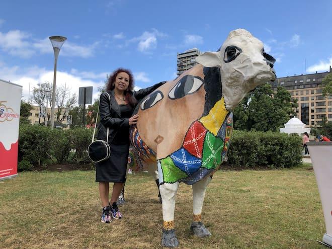 Vacas urbanas se toman la plaza de armas