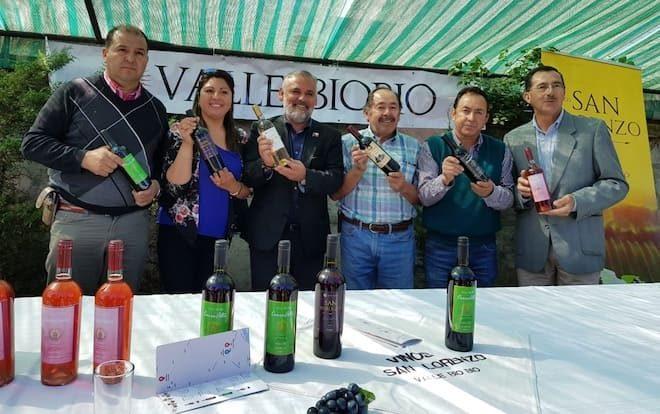 Acuerdo de Producción Limpia impulsarála competitividad de viñateros del Valle Biobío