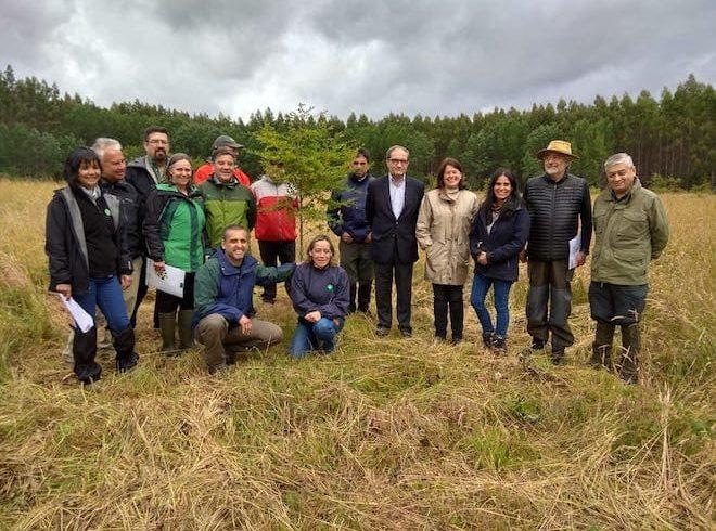 INFOR y CONAF firman convenio para la conservación y mejoramiento genético de especies forestales nativas