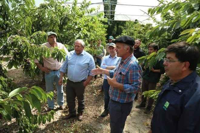 """Ministro Walker tras gira por Región de Aysén: """"Estamos produciendo cerezos en la Patagonia en una época donde no hay cerezas en el mundo"""""""