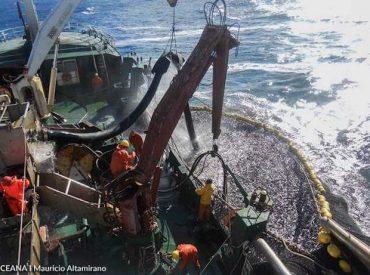 Plataforma Social de Trabajadores Pesqueros podría incluirse en Ley Corta