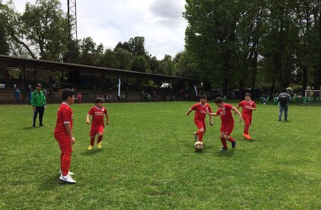 Municipalidad de Temuco abre inscripciones a talleres deportivos de verano