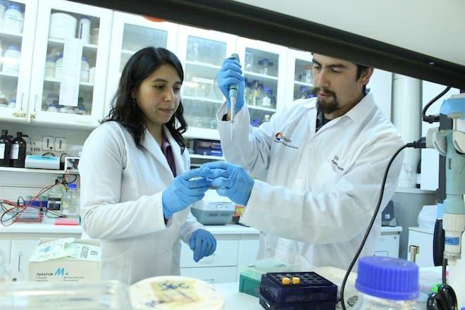 Los alimentos creados en base a productos naturales esperan fortalecer la industria acuícola