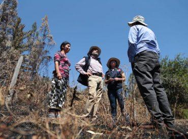 INDAP entrega recursos de emergencia a agricultores afectados por incendios en La Araucanía