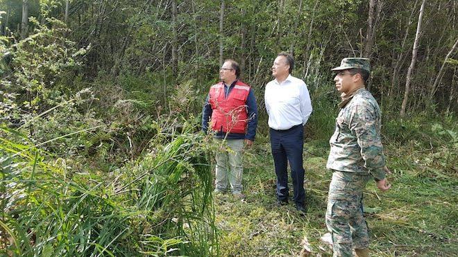 Conaf junto a servicios públicos y Ejército construyen cortafuego en Villa Chiloé