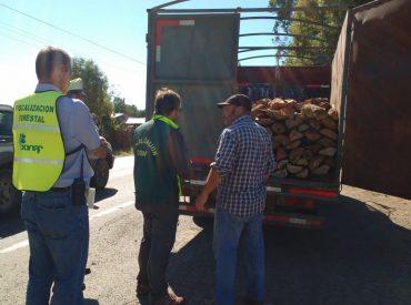 Mesa Regional de Fiscalización Forestal realizó inspección educativa en Osorno