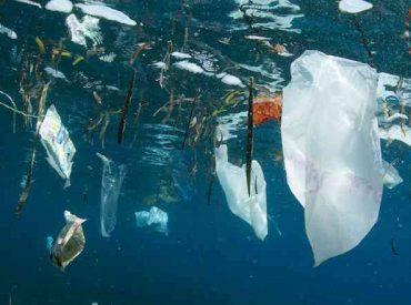 Expertos UNAB revisan los magros resultados de la COP25