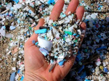 """Greenpeace ante alarmante informe del Derecho Ambiental Internacional: """"Ciclo de vida del plástico es una amenaza para la salud humana"""""""