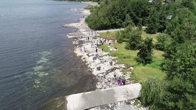Ministro Felipe Ward instruye inmediata investigación por polémica en Lago Ranco