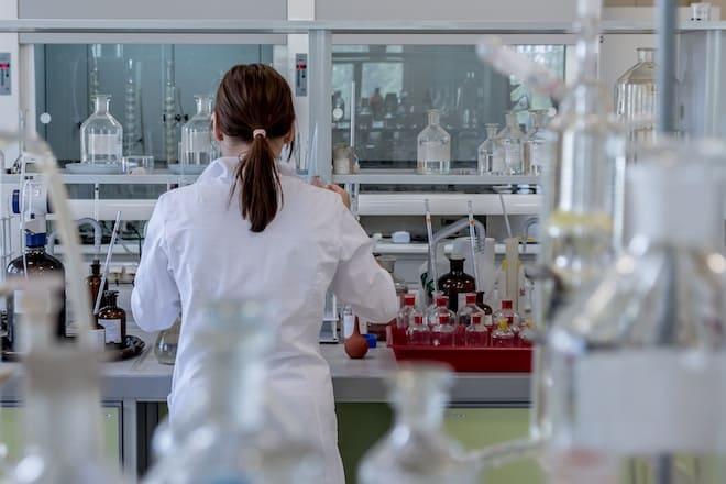 """Levaduras: Un """"organismo modelo"""" para el estudio del cáncer"""