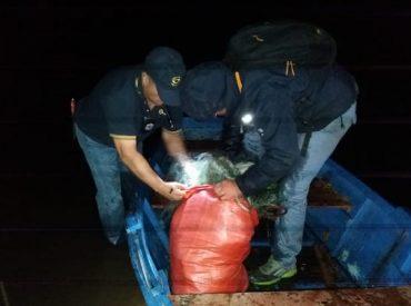 Sorprenden a campamento de pescadores furtivos 'in fraganti' en Araucanía