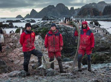 Investigador del INACH estudió formas de alimentación de pingüinos y petreles en isla Nelson