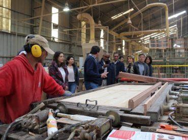 Embajador de Sudáfrica visita Los Ríos destacando el crecimiento de las exportaciones silvoagropecuarias
