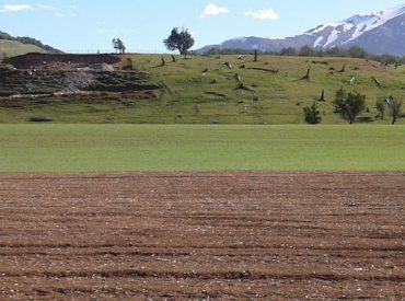SAG invita a postular a la recuperación de suelos degradados