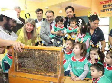 Convenio-SAG-INTEGRA: con entretenido cuento enseñan a preescolares el mundo de las abejas