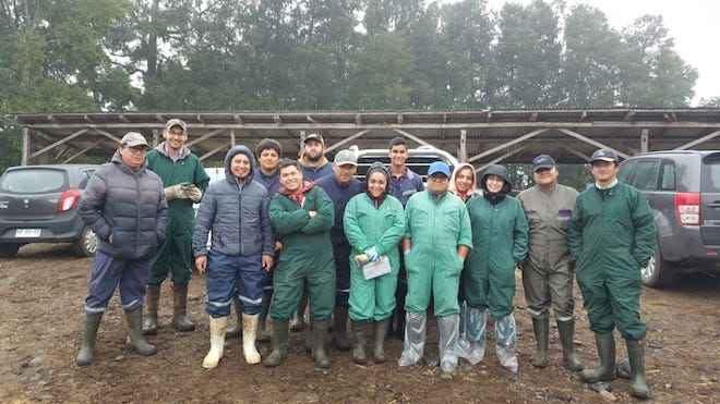 Trabajadores agrícolas actualizaron prácticas en manejo productivo y enfermería de ganado