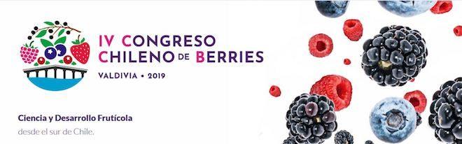 Valdivia será sede del 4to Congreso Chileno de Berries