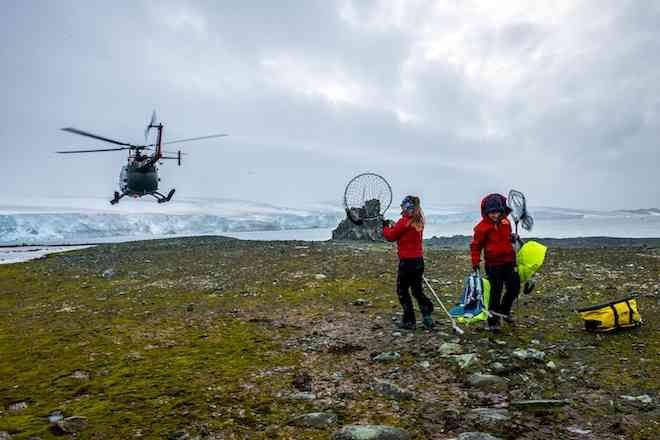 Conicyt e INACH unen esfuerzos para financiar superproyectos en Antártica