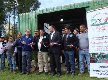 Ministros Walker y Moreno refuerzan modelo asociativo en el Plan Impulso para hacer crecer a La Araucanía