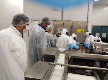 Proyectan la mitilicultura como la industria del futuro de Chile