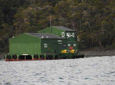 Sernapesca suspende temporalmente certificación a Nova Austral como centro libre de uso de antibióticos