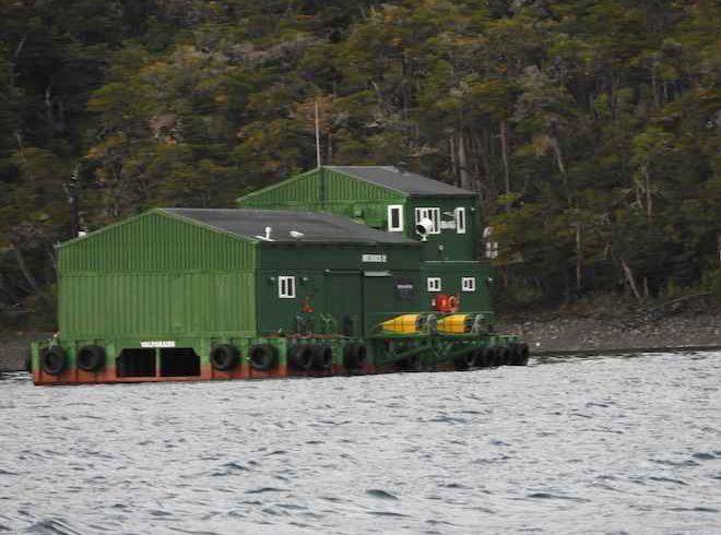 Corte acoge recurso contra Nova Austral: duro golpe a intento de expansión de salmoneras en la Patagonia