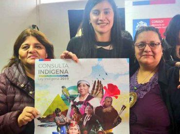 Comienza la primera sesión de la Consulta Indígena 2019 en la Región de Magallanes y la Antártica Chilena