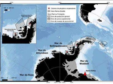 El fracaso reproductivo de pingüinos emperador en el mar de Weddell y la importancia de las Áreas Marinas Protegidas en la Antártica