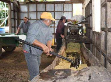 Proyecto Fondart Regional rescata la historia de las Quintas de Manzanas de la región de Los Ríos