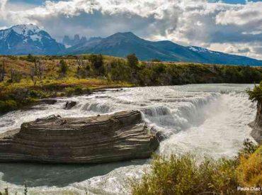 """Científico chileno sobre primer informe global del estado de la biodiversidad desde 2005: """"Todavía tenemos suficientes ecosistemas naturales como para no darnos cuenta de que los estamos perdiendo"""""""
