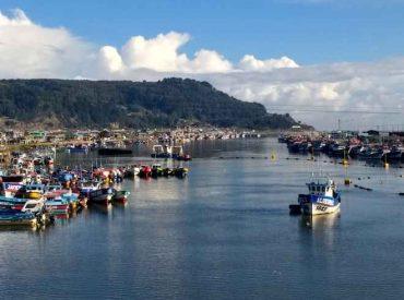 Sernapesca informa inicio de inédito plan de fiscalización de la pesca de la reineta