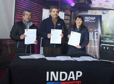 INDAP y Cooperativa Ovicoop firman alianza productiva para potenciar comercialización de carne de cordero gourmet