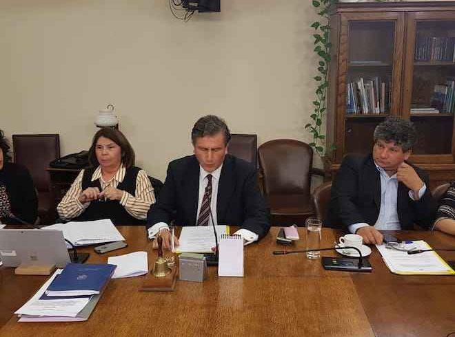 Jorge Sabag asume presidencia de la Comisión de Agricultura de la Cámara de Diputados