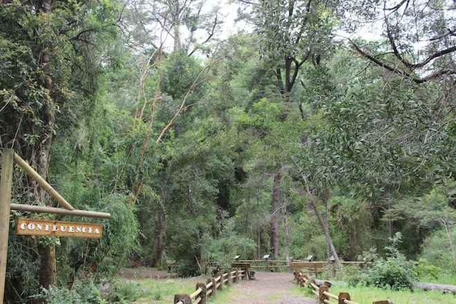 Consejo Consultivo de la Reserva Nacional Nonguén cuenta con nuevo directorio