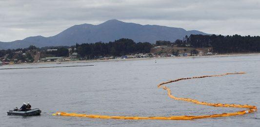 """Greenpeace por derrame de petróleo en aguas de la Patagonia: """"Las consecuencias pueden ser devastadoras"""""""