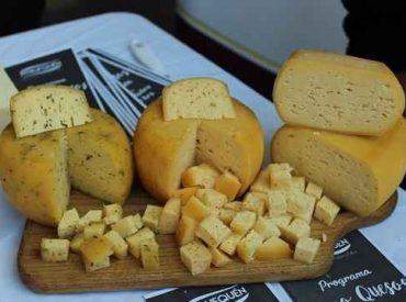 """Seremi de Agricultura: """"Sucedáneos del queso son una competencia desleal contra los cientos de queseros artesanales de La Araucanía"""""""