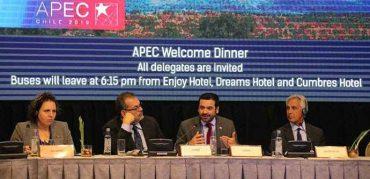 Subsecretario Villarreal expone en Foro APEC sobre las políticas sociales de envejecimiento positivo