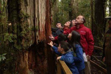 """Ministro Antonio Walker: """"Chile tiene uno de los mejores sistemas de parques del mundo"""""""
