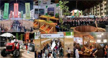 Conoce los atractivos que traerá la Expo Chile Agrícola 2019 el 26, 27 y 28 de agosto