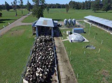 """INIA organiza seminario de """"Adaptación y mitigación de los sistemas de producción de leche al cambio climático"""""""